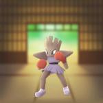 Hitmonchan_(Pokémon)