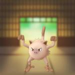 Mankey_(Pokémon)