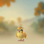 Pidgey_(Pokémon)